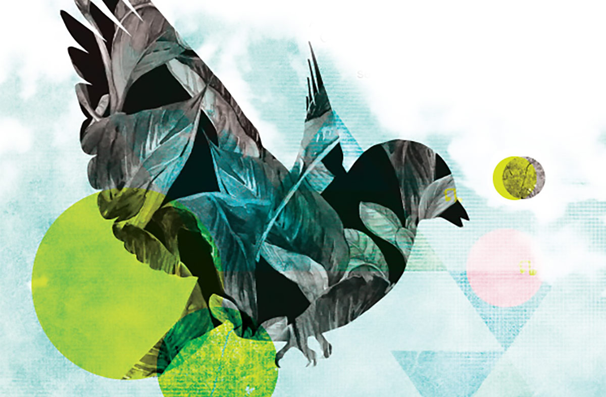 Birdsong / Cân Yr Adar
